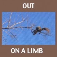 Out on a Limb Creatively
