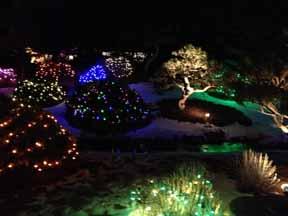 Blossoms of Light at Denver Botanic Gardens