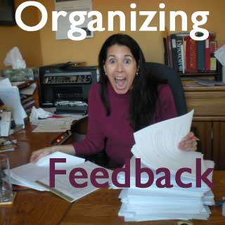 Novel Critique: Organizing Group Feedback