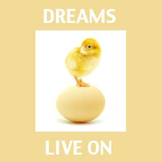 Dreams Live On